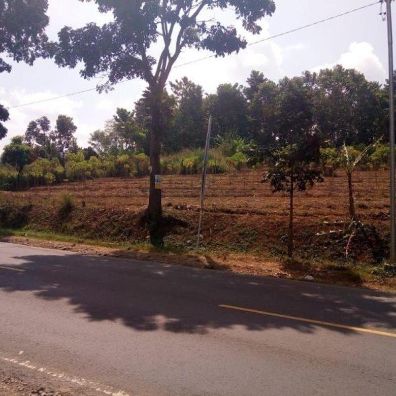 Jual Murah Tanah Matang Main Road Di kp Ciaro Limbangan Garut