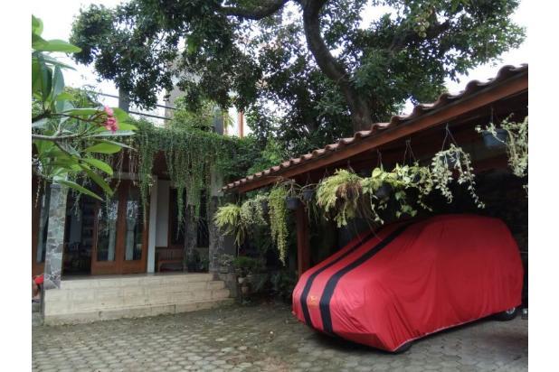 Villa Hijau Asri di Tengah Kota Jakarta Selatan. 15829519