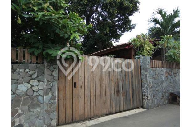 Villa Hijau Asri di Tengah Kota Jakarta Selatan. 15829548