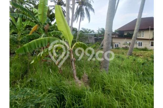 Disewakan Tanah Di Dekat Canggu Club 14849589