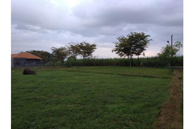 Tanah  Purbalingga 13426351