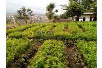 Tanah Dijual Daerah Giripurno
