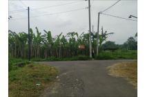 Tanah--4
