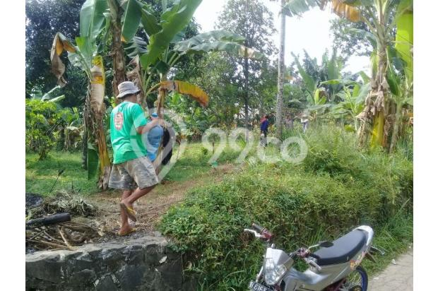 Jangan Pilih Tanah AJB: Kaveling SHM Pecah Jauh Lebih Aman 13243544