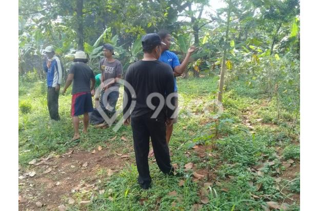 Jangan Pilih Tanah AJB: Kaveling SHM Pecah Jauh Lebih Aman 13243548