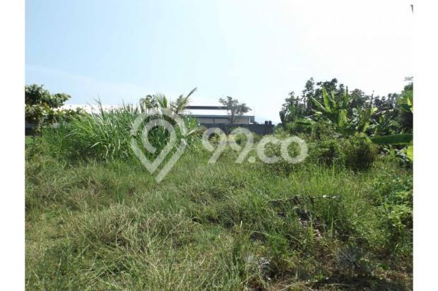 Dijual Murah Tanah Persawahan Di Sardonoharjo Ngaglik 7609819