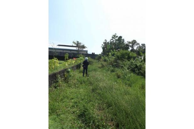 Dijual Murah Tanah Persawahan Di Sardonoharjo Ngaglik 7609823