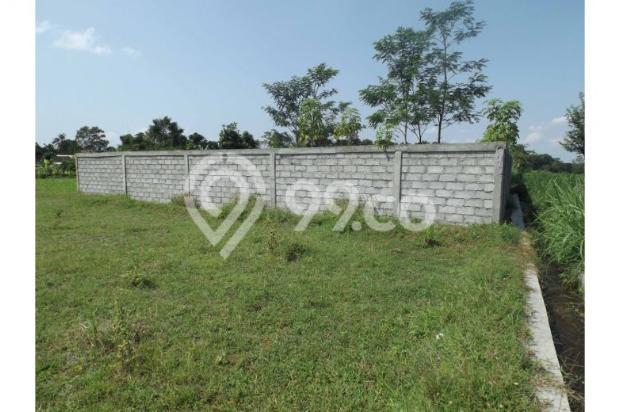 Dijual Murah Tanah Persawahan Di Sardonoharjo Ngaglik 7609822