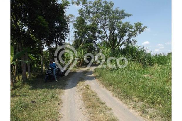 Dijual Murah Tanah Persawahan Di Sardonoharjo Ngaglik 7609827