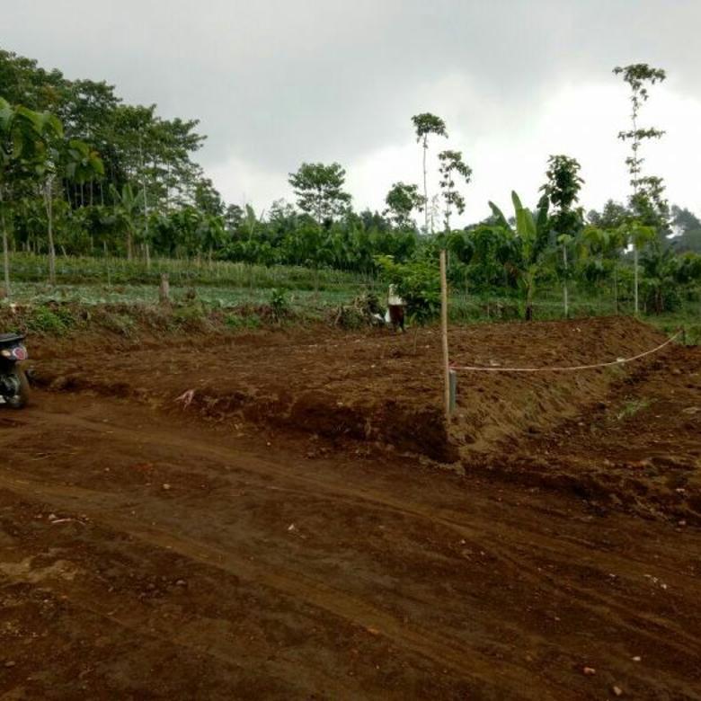 Tanah kavling dijual murah di green montana village puncak cipanas cianjur