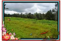 Strategis, 3.280 m2 View  Sawah linkungan villa di Ubud Tegalalang