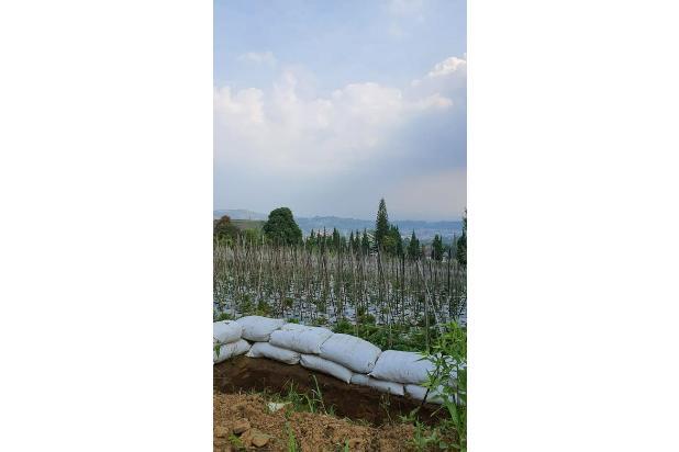 Rp4,29mily Tanah Dijual