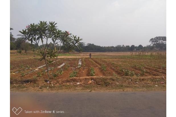 Rp14,4mily Tanah Dijual