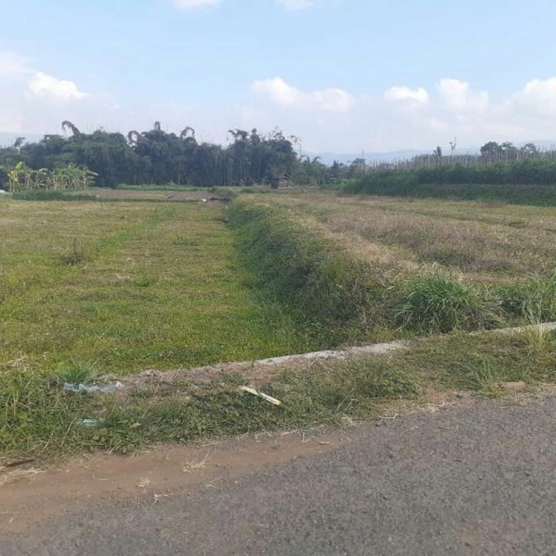 Tanah-Malang-2