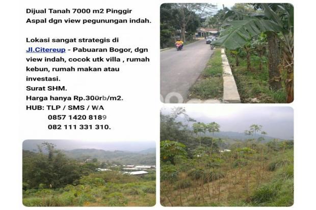 tanah 7000 m2 pinggir jalan 16226411