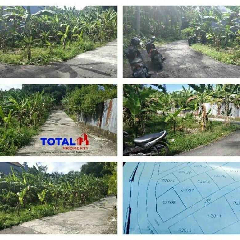 Dijual Tanah Hoek 1,8 are di Penatih Denpasar Gatsu Batu Bulan