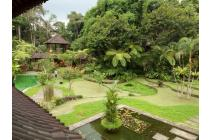 For SALE a Free hold Villa in UBUD BALI