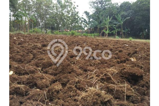 DiJual Tanah Kavling Di Kab Bekasi Lokasi Strategis, sertifikat SHM 13244524