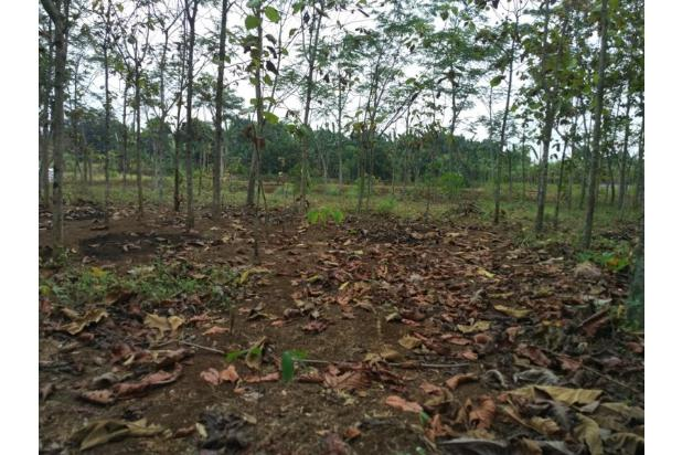 DiJual Tanah Kavling Di Kab Bekasi Lokasi Strategis, sertifikat SHM 13244527