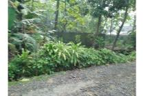 Iklan Tanah di Daerah Kulonprogo, Investasi Menarik Dekat Bnadara Baru