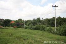 Large plot of freehold land for sale in Kaba Kaba - Tabanan