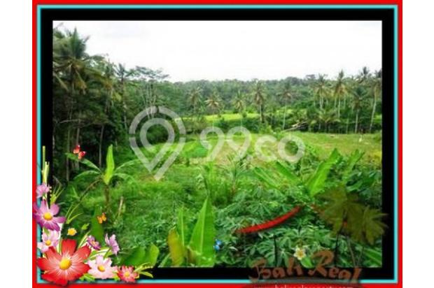 Properti Pilihan, 20.000 m2 View tebing,sawah,sungai ayung di Ubud 3871820
