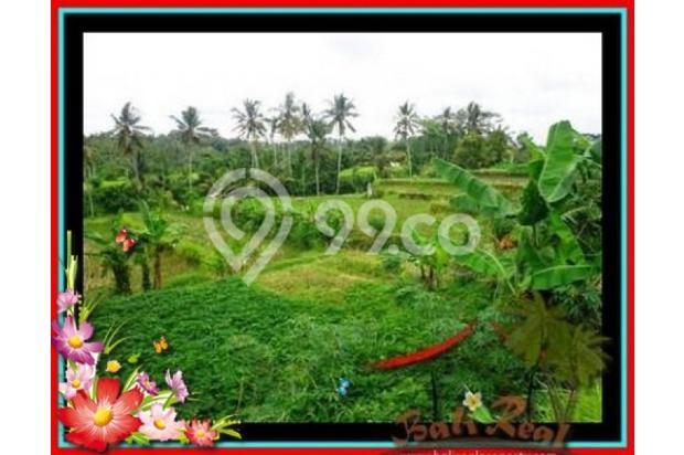 Properti Pilihan, 20.000 m2 View tebing,sawah,sungai ayung di Ubud 3871821