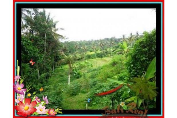 Properti Pilihan, 20.000 m2 View tebing,sawah,sungai ayung di Ubud 3871822