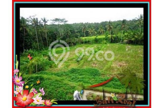 Properti Pilihan, 20.000 m2 View tebing,sawah,sungai ayung di Ubud 3871824