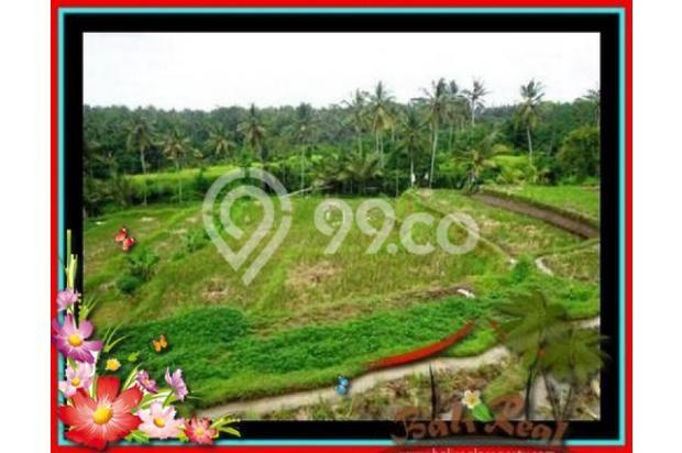Properti Pilihan, 20.000 m2 View tebing,sawah,sungai ayung di Ubud 3871825
