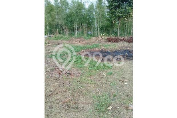 Jual Kaveling Tanah Kalisuren, Depok: Site Plan Model Cluster 13244199