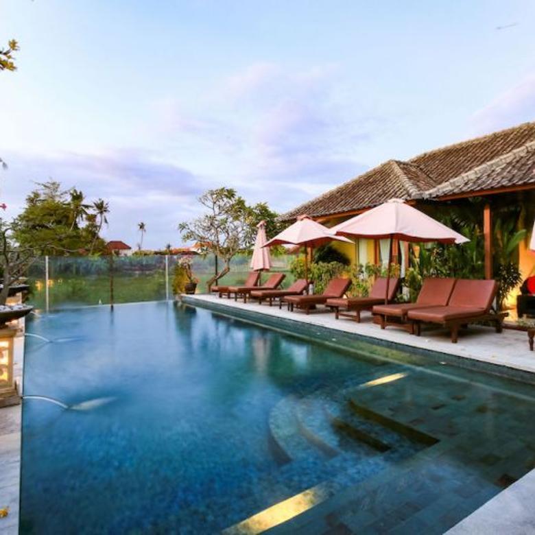 Sanur Hotel  High Occupancy