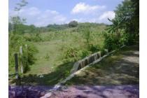 Tanah 1,2 Ha Di Mangunharjo