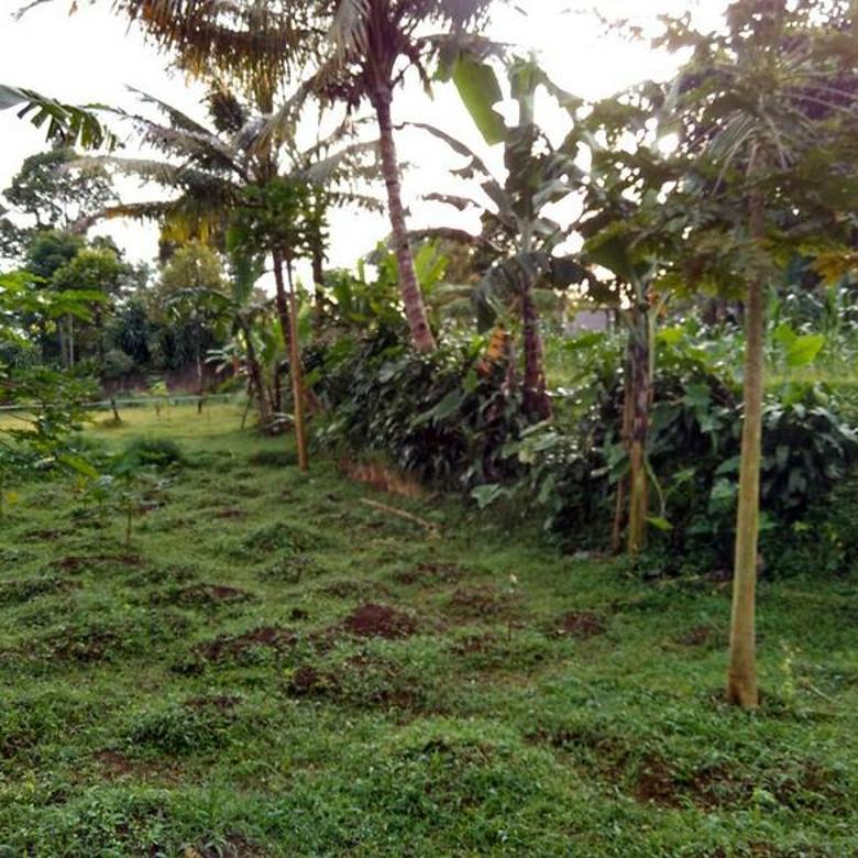 Tanah Ciapus Kabupaten Bogor - Harga Beda Tipis Dengan NJOP