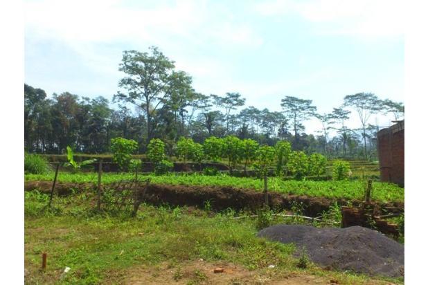 Tanah Murah Malang 16508699