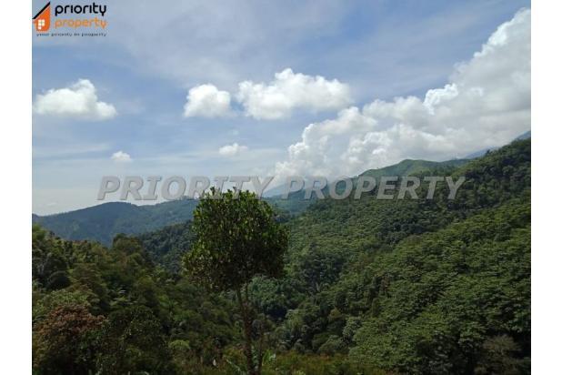 Rp49,3mily Tanah Dijual