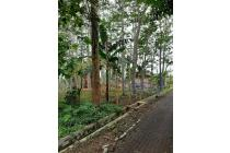 Tanah di Tambangan , Mijen Semarang ( Ty1950)