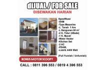 Anda mau Beli kami Jual Rumah Minimalis Murah di Jimbaran, Bali plus bonus