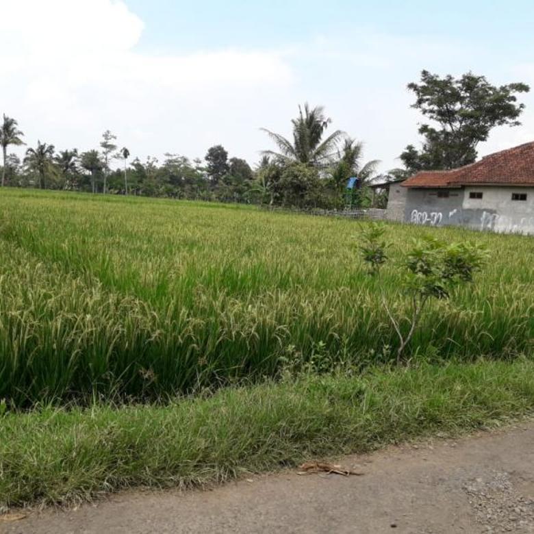 Tanah-Cianjur-3