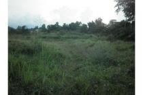 Tanah 1 ha Tirtayasa , cocok perum cluster
