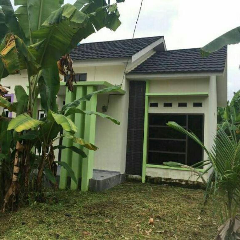 rumah type minimalis dilorong bersama