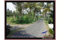 Tanah Potensial sangat Strategis 940 m2 Ubud Tampak Siring YUB531