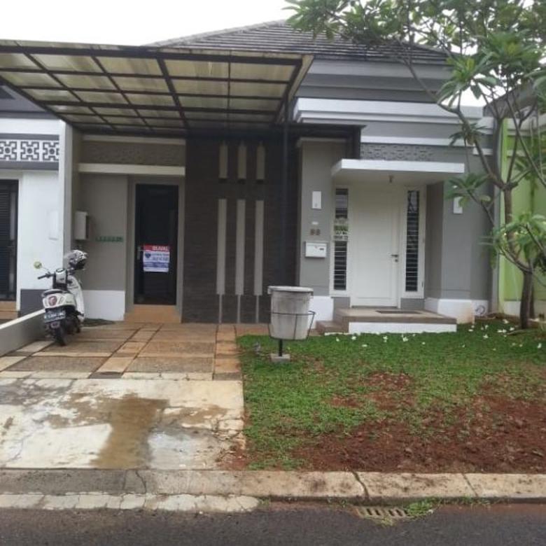 Rumah Feronia Alam Sutera Tangerang  cluster terbaik Alam