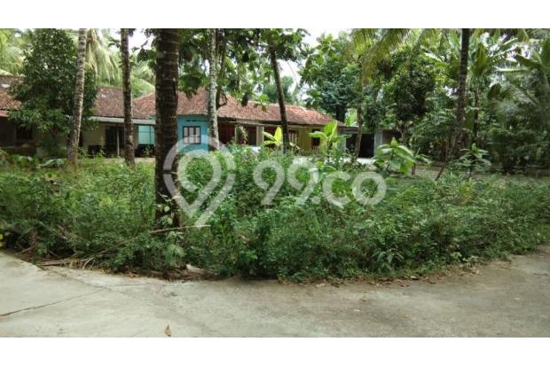 Tanah Pekarangan di Bendungan, Kulon Progo 18273987