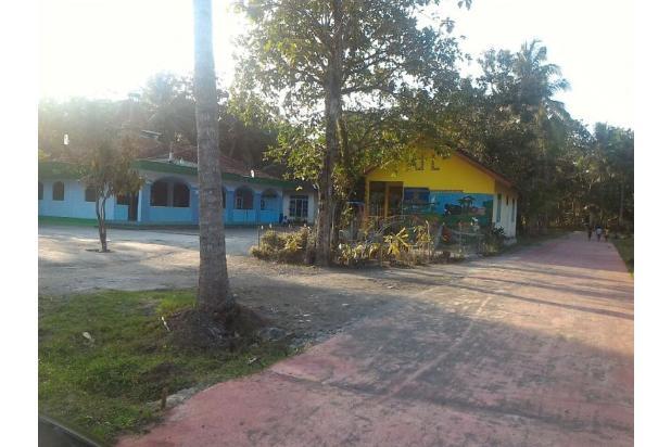 Miliki Kesempatan Beli Tanah Kredit Bank, Kulonprogo: Ada 18 Bidang SHM 16049168