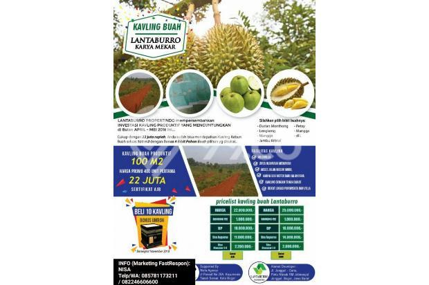 INVESTASI Kavling (100m2) 22JUTA Di Kab Bogor GRATIS 4 Pohon (DURIAN dll) 17935446