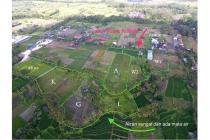Jual Tanah 2,5ha di Jalan Raya Krasan Badung Bali