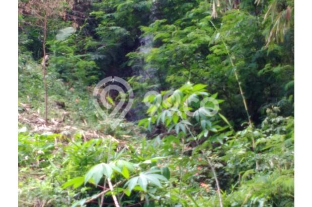 Beli tanah dapat Villa, Tanah murah di Ciwidey | Ru 14006404