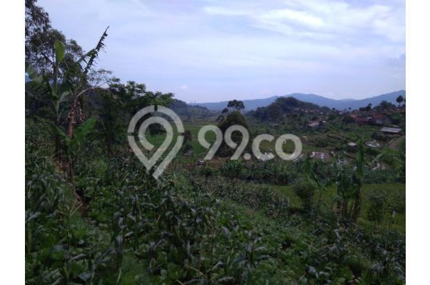 Beli tanah dapat Villa, Tanah murah di Ciwidey | Ru 14014967