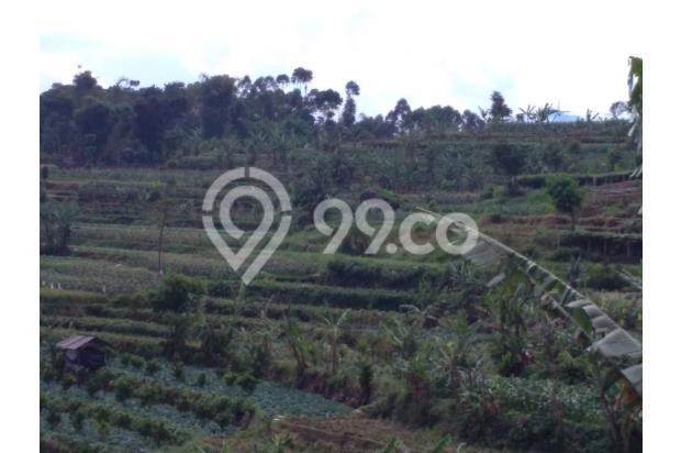 Beli tanah dapat Villa, Tanah murah di Ciwidey | Ru 14014975
